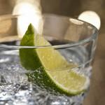 Gin-Christmas-Cornwall-Penventon-Hotel