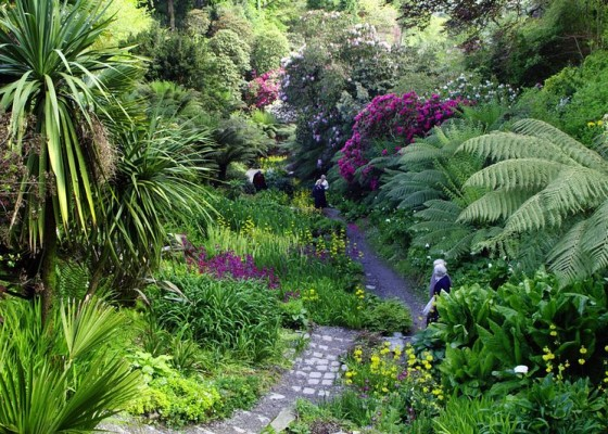 things-to-do-cornwall-gardens-trebah