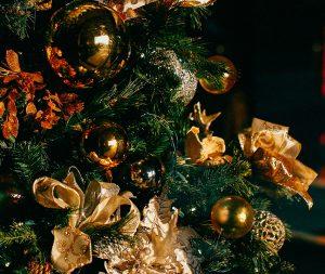 Christmas Breaks at The Penventon