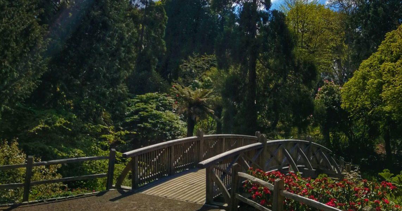 Trelissick Gardens Close to the Penventon Park Hotel In Cornwall