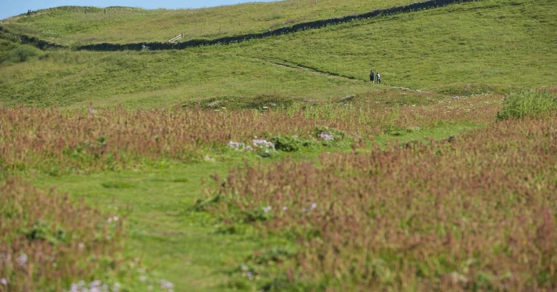 Explore-Cornwall-walking-holiday-Penventon-Hotel